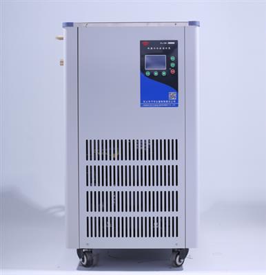 DLSB-20L低温冷却液循环泵